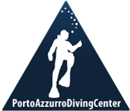 porto azzurro diving center | isola d'elba